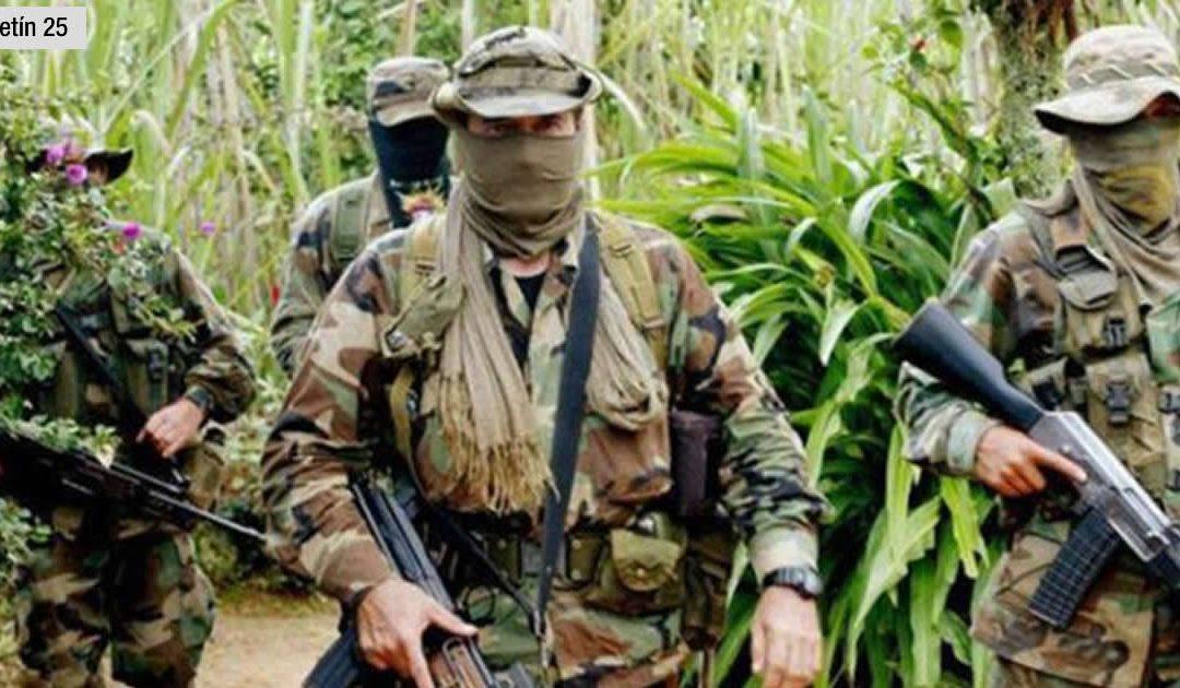 #Boletin25 – GRUPOS ARMADOS IRREGULARES EXTIENDEN SU PRESENCIA EN TERRITORIO VENEZOLANO