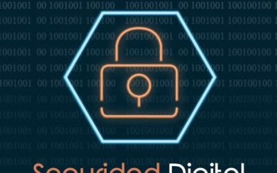 Manual seguridad digital
